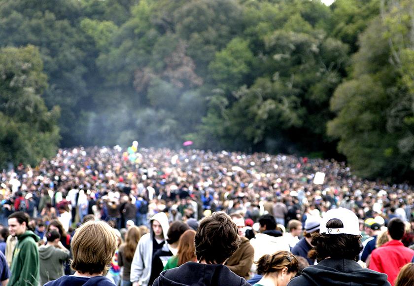 420 FESTIVAL 2015