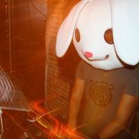 Lush Bunny: Main Image