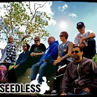 SEEDLESS: Main Image