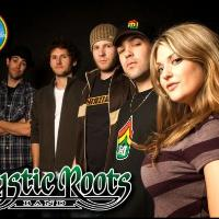 Mystic Roots Band: Main Image