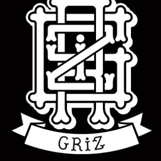 Griz | Mansions On The Moon: Main Image