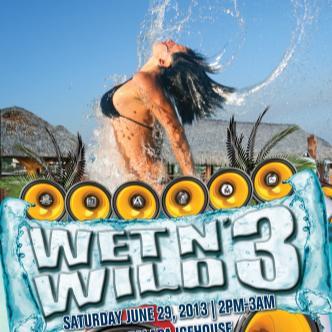 Wet N Wild 3: Main Image