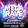 MEGA RAVE 2014 (25+ ARTISTS)-img