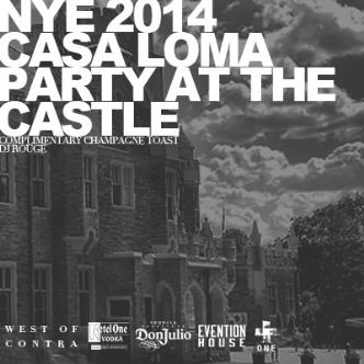 PARTY AT THE CASTLE NYE