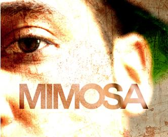 Midnight Voyage LIVE Mimosa: Main Image