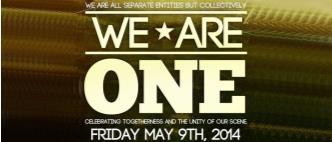 We Are One 2014: Main Image