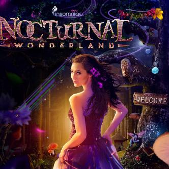 Nocturnal Wonderland-img