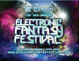 Electronic Fantasy Festival (DJ GAMMER): Main Image