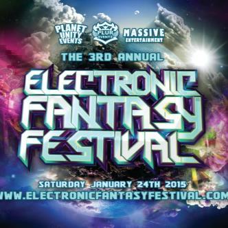 Electronic Fantasy Festival (DJ GAMMER)-img