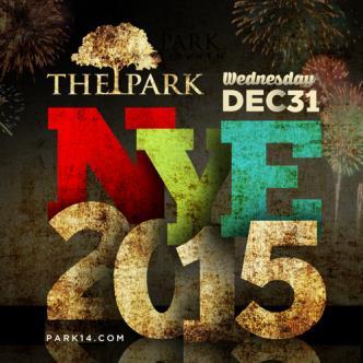 Park NYE Celebration-img