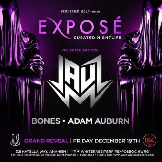 Expose ft. Jauz & Adam Auburn-img
