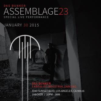 Assemblage 23-img