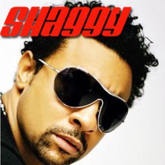 Shaggy-img