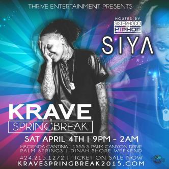 KRAVE SPRING BREAK - Apr 4-5 2015 Palm Springs CA-img