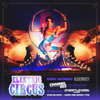ELEKTRIC CIRCUS W/ EVERYONE DESERVES A CHANCE PATIO-img